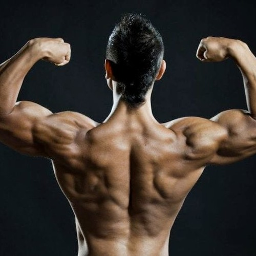 Androdna testo boost - pour la masse musculaire - composition  - action - dangereux
